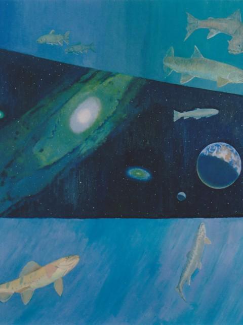 岩魚の宇宙